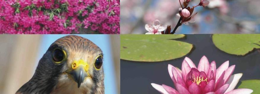 promocja bioróżnorodności Polski Południowo-Wschodniej