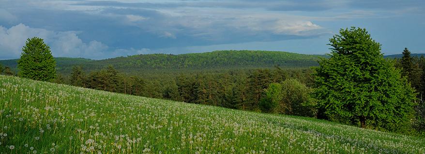 47 lat Roztoczańskiego Parku Narodowego